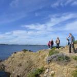 Journée de randonnée guidée à Porquerolles depuis Toulon