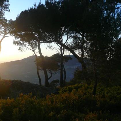 Sortie guidée nocturne au mont Faron