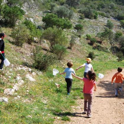 sortie guidée pour enfants à Toulon dans la colline