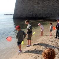 Sortie guidée pour les enfants à Toulon littoral